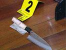 犯罪嫌疑人杨某所使用的凶器