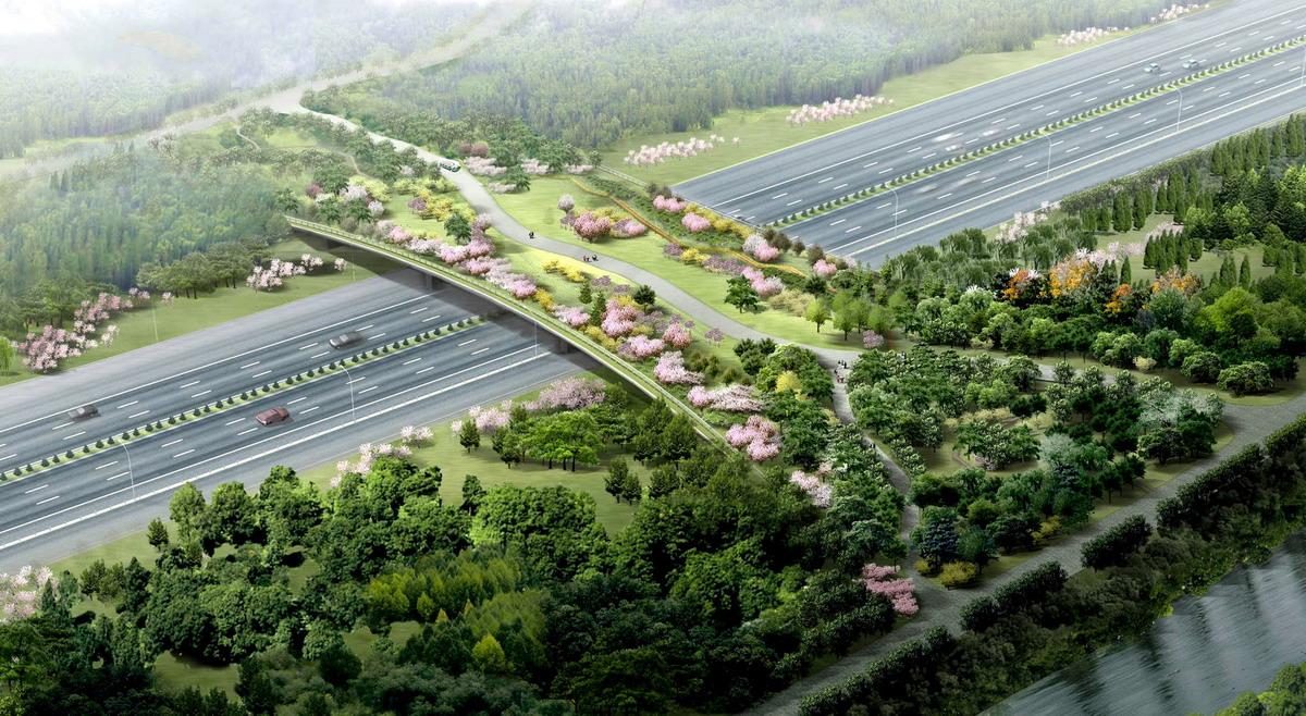 奥林匹克森林公园总设计师胡洁专访