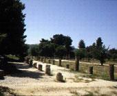 古奥林匹亚遗址