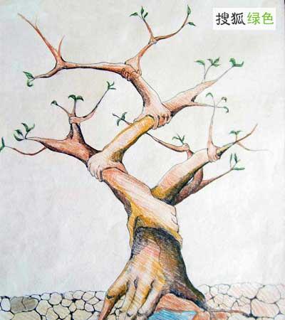 小学生环保公益招贴画设计大赛中脱颖而出