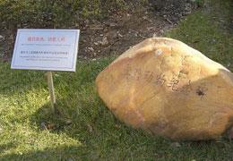 """上海为""""牺牲""""实验动物立碑"""