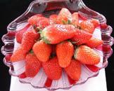 怀柔茶坞红莓采摘园
