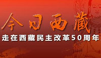五十周年看西藏