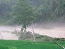 暴风雨和洪水造成电杆东倒西歪
