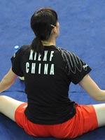 林丹谢杏芳,羽毛球世锦赛,印度羽毛球世锦赛