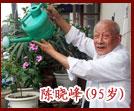 百岁老人 陈晓峰