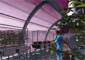 未来的火星种植园