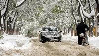 2009全国大范围遭受雨雪寒潮天气