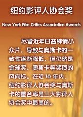 纽约影评人协会奖