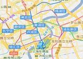 2009上海汽车消费调查白皮书