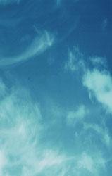 深圳嘉文服饰总裁何淑君,卡汶女装,KAVON服饰,时尚女装,深圳女装,2010春夏产品