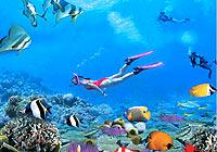 三亚:国家旅游岛
