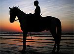 另类骑行 骑马漫步古战场