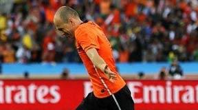 罗本,南非世界杯