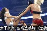女子内衣搏击现世界杯惨剧 亚裔美女被踢中胸口