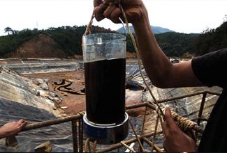 紫金矿业污染