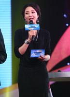 2010夏季电视剧互联网盛典