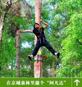 朝阳公园体验树上穿越