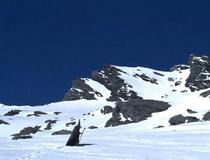 勇士踏上的征途:白色山脉