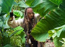 强尼-德普穿梭于雨林间