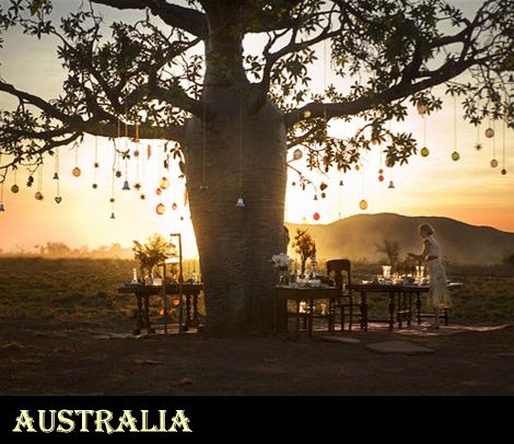 澳洲情,寻找你灵魂里的大自然