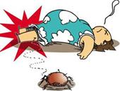 遭遇蜱虫,我们该怎么办?