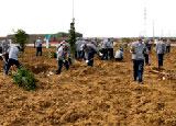 美芝公司组织员工植树造林
