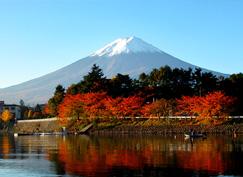 日语,日本留学
