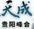 2011贵阳峰会