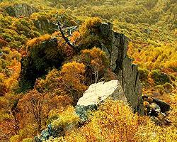 白草畔自然风景区:赏秋