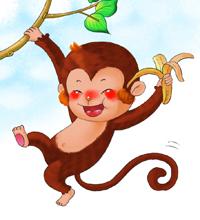 人为什么会长猴子_一段关于\