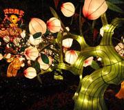 广州:越秀灯会