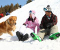 情侣免费畅滑南山雪场