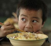 免费午餐 邓飞 学生营养计划 搜狐教育 两会教育 教育热点