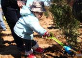 最年幼的植树宝宝