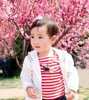 漂亮小姑娘的樱花季节