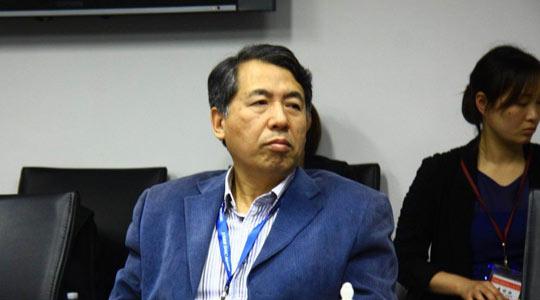 中国社科院工业经济研究所工业发展室主任赵英