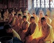 神秘的佛学院