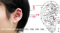 中医养生班11期:贴耳豆治鼻炎
