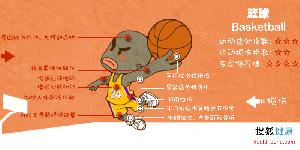 健康悲喜录 篮球