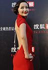 第二届搜狐视频电视剧盛典