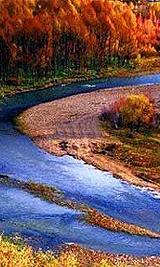 莫尔道嘎 内蒙古最绚丽的秋色