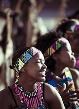 南非祖鲁族:11头牛换一个妻子
