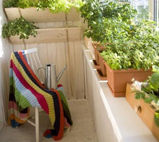 优雅的阳台菜园