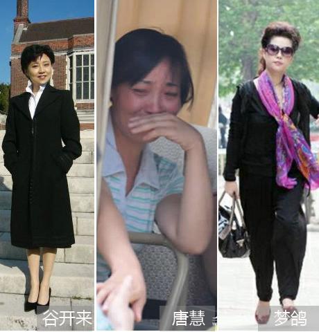 中国式家长,中国好母亲,谷开来,梦鸽,唐慧