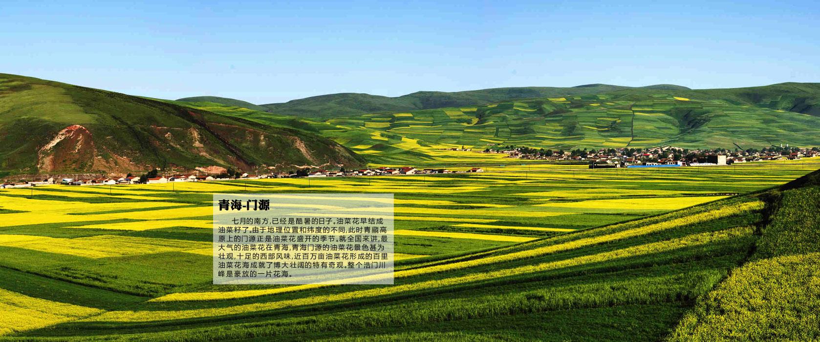 中国最美油菜花海