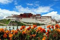西藏 IX35