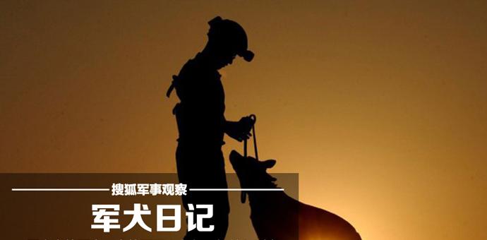 据狗上战场的历史已有千年之久,时至今日,军犬仍经过训练用于在战区执行任务――从侦察到追踪,从探测到放哨。即便是最耐用的机器也会有故障的时候,而军犬们,除非它们死去,绝不背叛主人… [详细]