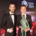 埃雷拉获曼联最佳球员奖
