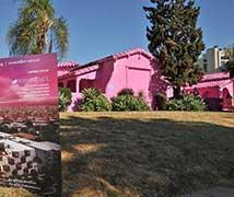 美国洛杉矶现粉色房屋